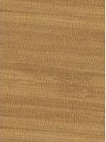 Carmel Bamboo 0541