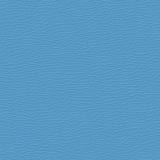 Bouyant Blue