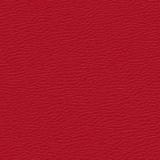 Cardinal 0236