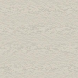 Taupe 0113